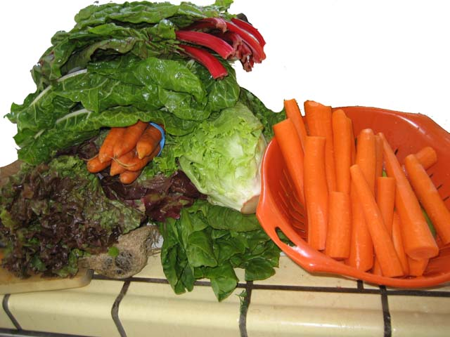mound of vegetables for Gerson juices